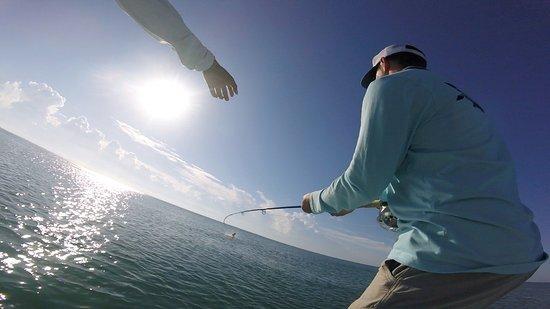 El Pescador Resort صورة فوتوغرافية