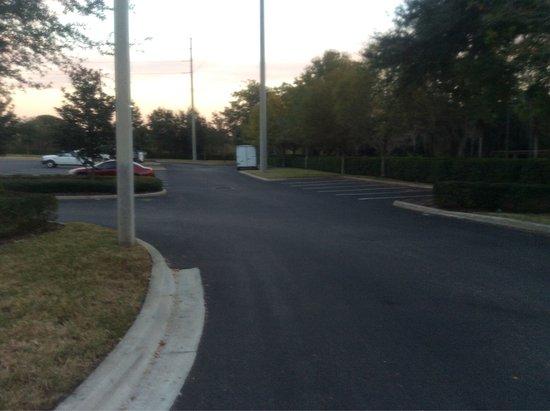 Hilton Garden Inn Tampa East/Brandon: Surroundings