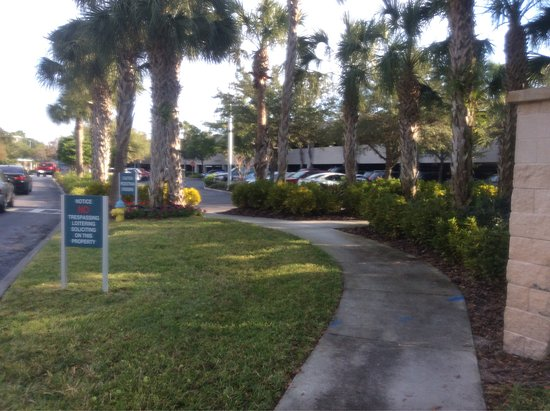 Hilton Garden Inn Tampa East/Brandon: Surroundings