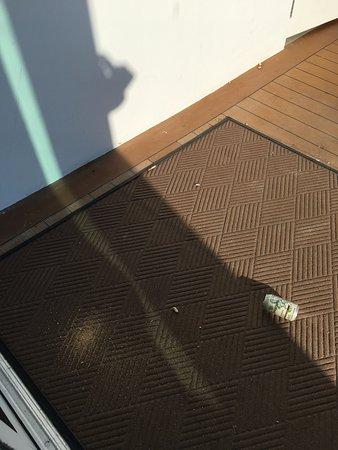 Bimini: dirty rooftop pool