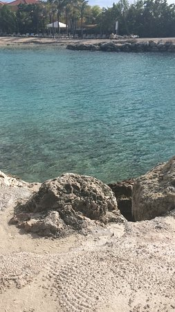 Lions Dive & Beach Resort Curacao: photo2.jpg