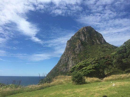 Sugar Loaf Islands and Paritutu Rock: photo2.jpg