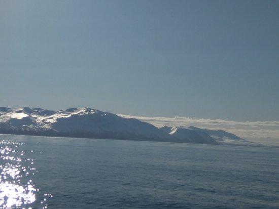 Husavik, Island: mar en calma