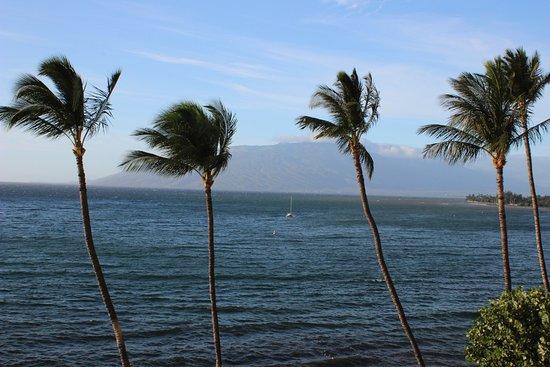 Royal Mauian: Ocean