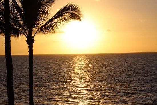 Royal Mauian: Sunset