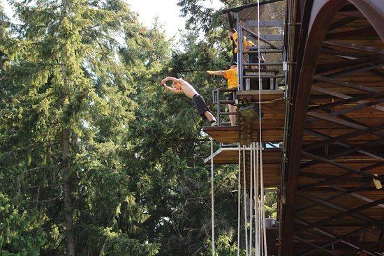 WildPlay Element Parks Nanaimo: Tarzan with wires
