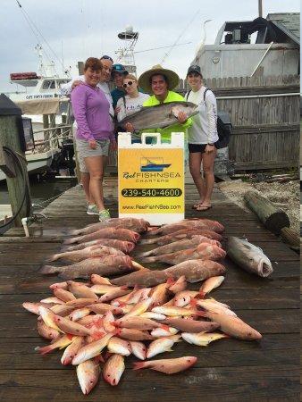 Reel Fish N Sea Deep Sea Fishing Charters: image11_large.jpg