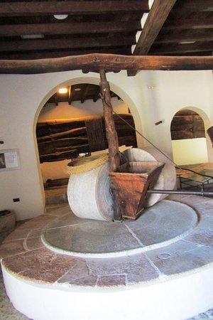 Museo del Aceite, DCOOP