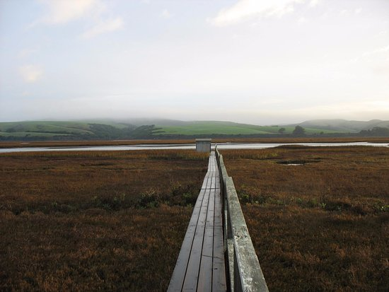 Inverness, Californië: Catwalk from the Hotel to the Wetlands