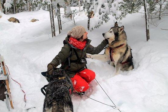 L'Anse-Saint-Jean, Canada: Le midi c'est l'occasion de partager de beaux moment avec les chiens: ici Beyrouth et Pichou