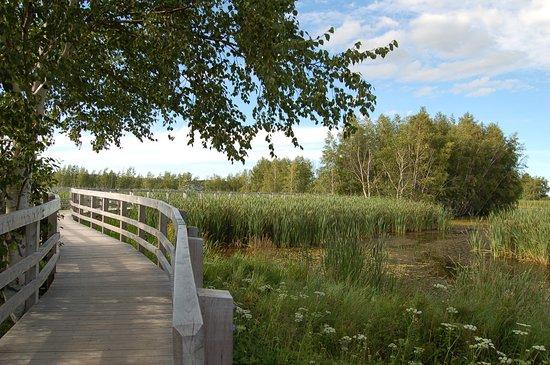 Sackville, Canada: Gemütlich laufen