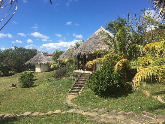 Las Plumerias Lodge and Surf Photo