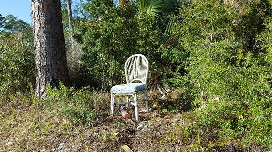 Apalachicola, FL: A Seat at the Beach