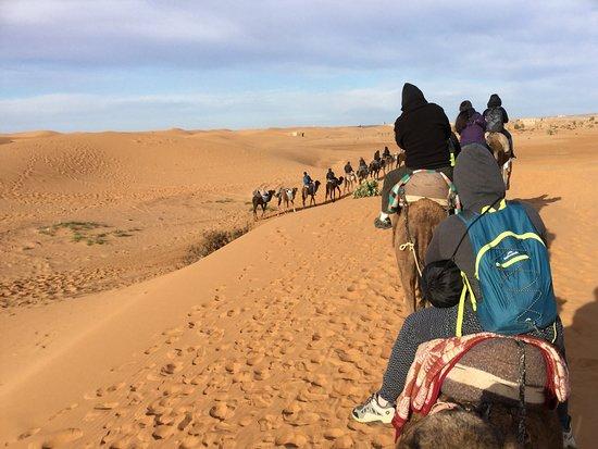 Experience Morocco: Take a camel ride in the Sahara Desert