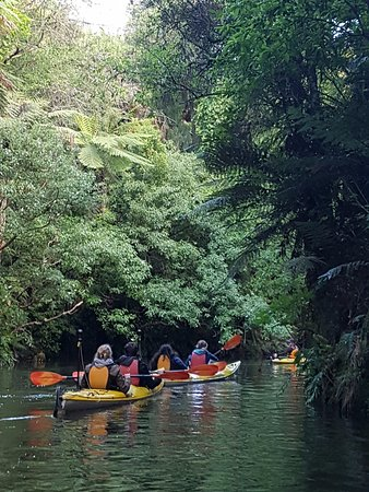 Love My New Zealand: Kayaking on the river (glow worms came later). Sharon and team take photos of the group for you!