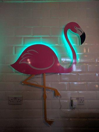 Kells, Ireland: Colin the Flamingo..