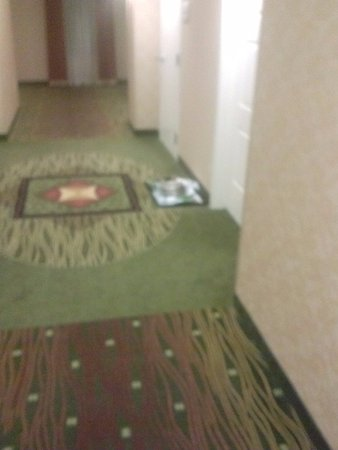 Hilton Garden Inn Palm Beach Gardens: I told the manager about this food tray in the hall way.