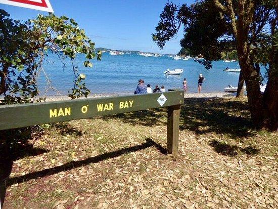 Isla Waiheke, Nueva Zelanda: photo0.jpg