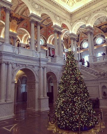 Christmas time in the Library of Congress!