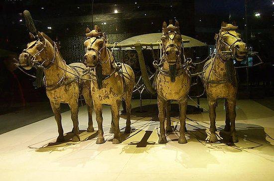 Xi'an Private Tour: Terracotta...