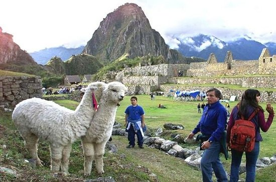 Peru 15-Day Tour from Lima with...
