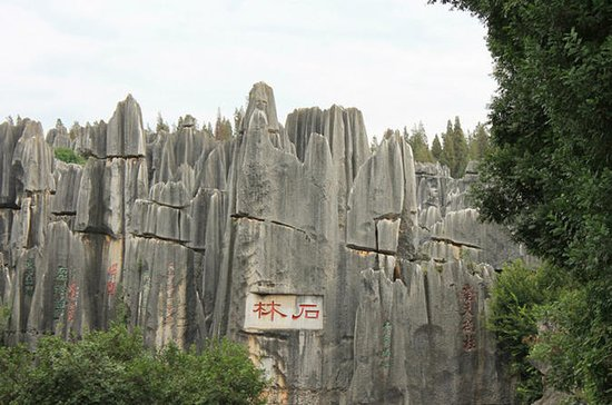Stone Forest Private Day Tour