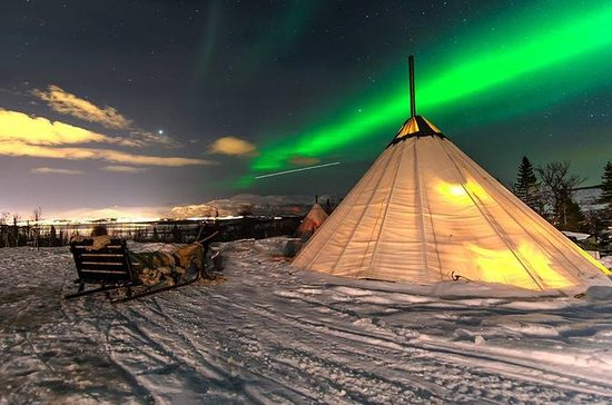 Kvaloya Northern Lights Tour...