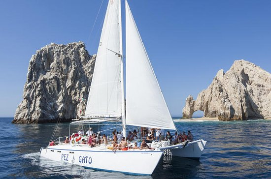 Snorkling Cruise i Los Cabos ombord...