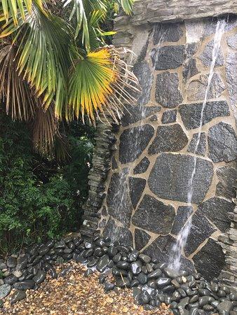 Sanctuary Palms: photo1.jpg