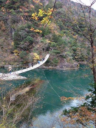 Yume no Tsuribashi Suspension Bridge : 夢のつり橋全景。