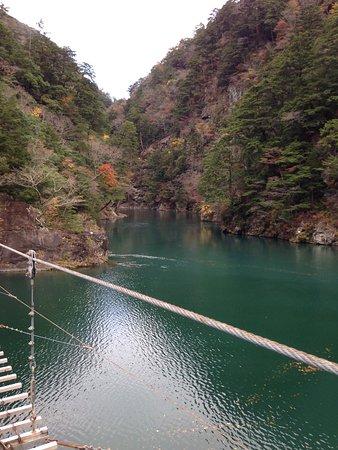 Yume no Tsuribashi Suspension Bridge : つり橋の上から。