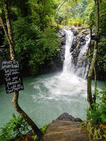 Trekking Trough The Jungle Picture Of Bali Jungle Trekking