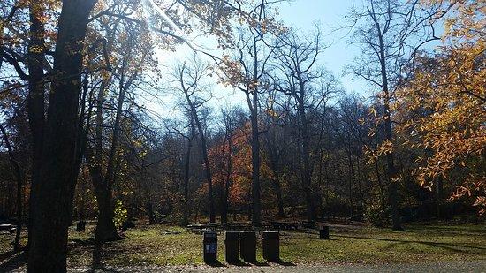 McLean, VA: Great Falls Park