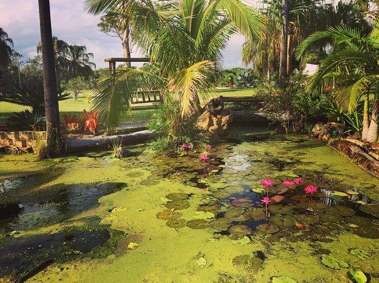 Agnes Water, Australia: photo7.jpg