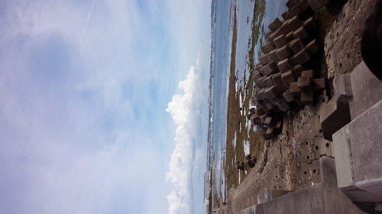 Miyagi Coast: 宮城海岸