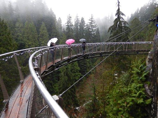 Kuzey Vancouver, Kanada: 足がすくむクリフウォーク
