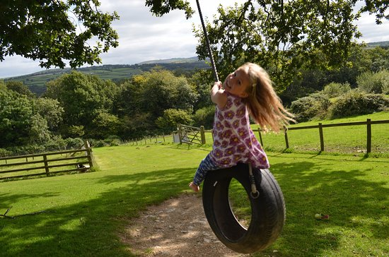 Boncath, UK: Children have a great time on the rope swings
