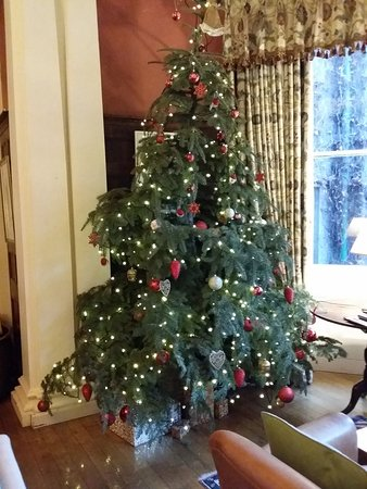 Crickhowell, UK: Christmas tree in main sitting room