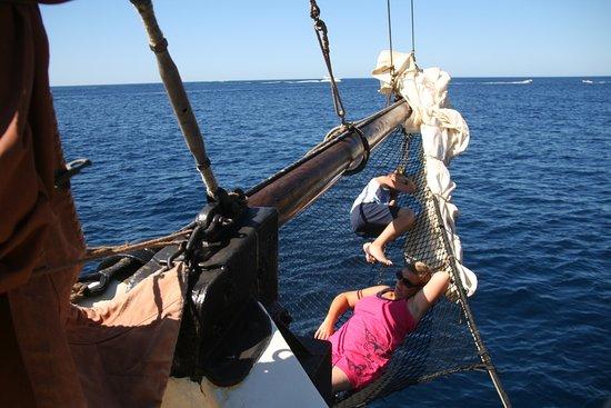 The Andrea Jensen Boat Trip照片