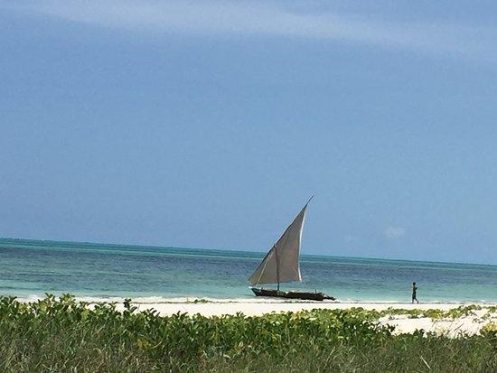 Zdjęcie Hakuna Majiwe Beach Lodge