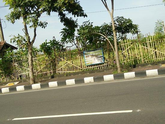 Hotel Made Bali Picture Of Hotel Made Bali Mengwi Tripadvisor