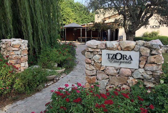 Tzora Vineyards