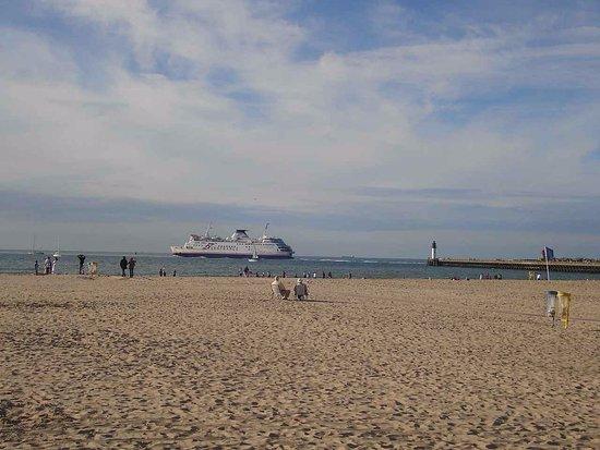 Calais Beach: plage et ferry