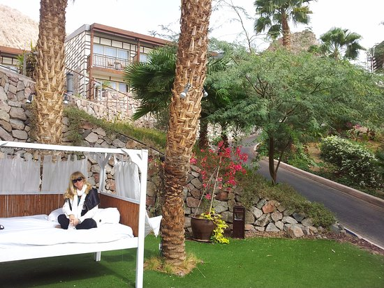 photo1 - picture of the orchid hotel and resort eilat, eilat
