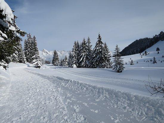 Stäfa, Suiza: Hiking through winter wonterland on well prepared trails.