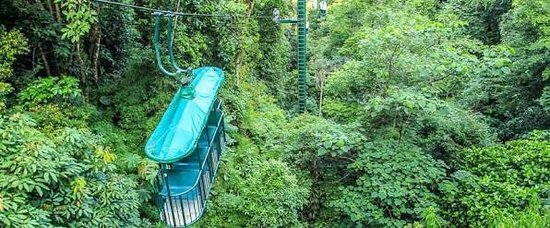Braulio Carrillo National Park, Costa Rica: photo2.jpg