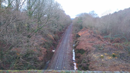 Caerphilly, UK: Looking along the main railway line bisecting the park