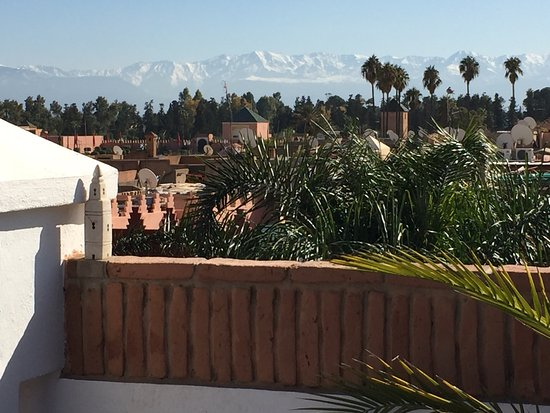 Maison Mnabha: View from the terrace, snowy Atlas in the background
