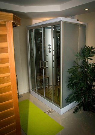 Llandysul, UK: Facilities - Steam Shower