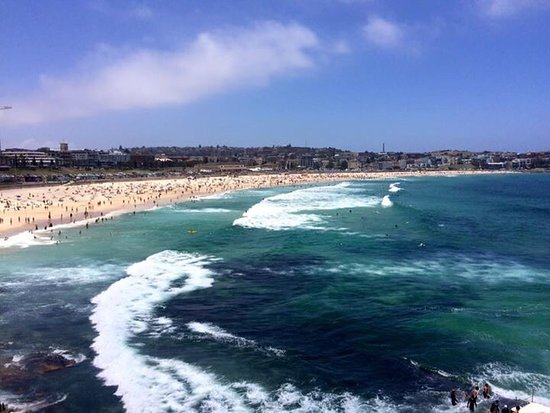 View Of Bondi Beach From Our Table - Picture Of Icebergs Dining